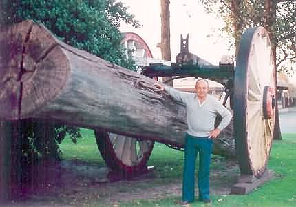 Charlie Miles with whim used to transport logs