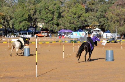 Mounted Games Pairs Championships